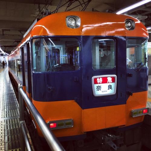 IMG 4694